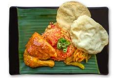 Briyani Rice Royaltyfri Foto