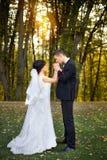 Bröllopcopule härlig brudbrudgum Precis merried close upp Arkivfoto