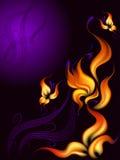 brännhet blomma Arkivfoton