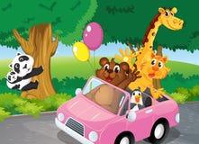 Bärnvoll von Tieren klettern und ein rosa Auto Lizenzfreies Stockfoto