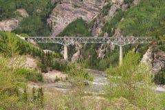 Bro över den Canyone floden i Alaska Arkivfoto