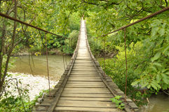 bro över den träfloden Arkivfoto