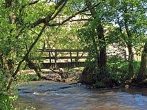 Bro över flodduvan Arkivbild