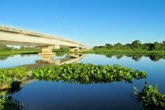 Bro över floden för blått vatten Royaltyfri Fotografi