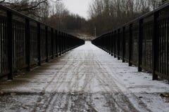 Bro över floden med svarta balustrader som täckas med en th arkivfoton