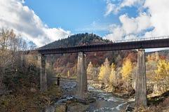 Bro över floden Prut i Yaremche, Ukraina Arkivbilder