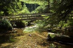 Bro över guld- liten vik Arkivbild