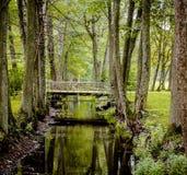 Bro över kanalen i parkera Arkivfoto