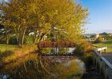 Bro över lugnt vatten Royaltyfria Bilder