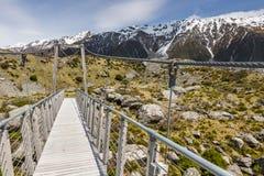 Bro över prostituteradfloden i den Aoraki nationalparken Nya Zeeland Royaltyfri Foto