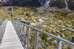 Bro över prostituteradfloden i den Aoraki nationalparken Nya Zeeland Royaltyfri Bild
