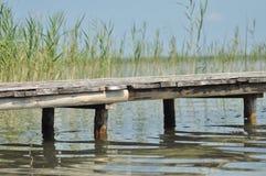 Bro över sjön Switaz. En liten våg på yttersidan Arkivfoton