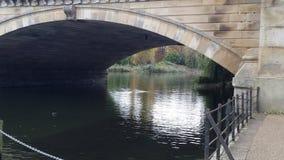 bro över slingra Royaltyfri Bild