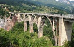 Bro över Tara Arkivfoton