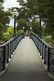 bro över torrens royaltyfri bild