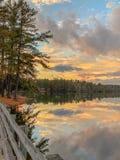 Bro över vatten med trädamdsjön royaltyfria foton