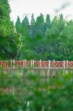 Bro över vattnet i parkera Arkivbilder