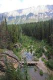 Bro - Alberta - Kanada Royaltyfri Foto