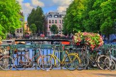 Bro Amsterdam royaltyfria foton