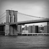 bro brooklyn New York arkivbilder