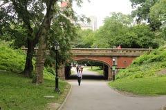 bro Central Park Royaltyfri Bild