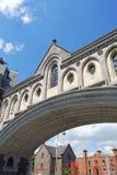 bro christ kyrkliga dublin Fotografering för Bildbyråer