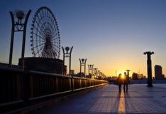 bro dröm- tokyo Arkivbild