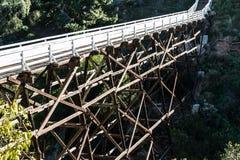 Bro för bock för kvittengata fot- Arkivfoton