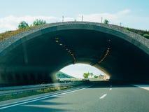 Bro för djur på vägen Grön bro över vägen Arkivfoton