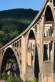 Bro för Tara betongbåge i bergen Arkivfoto