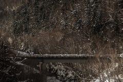 Bro för vinter` s av Shirahige på Biei, Hokkaido Royaltyfri Fotografi