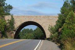 Bro i Acadia NP Arkivbilder