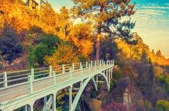 Bro i botanisk trädgård i Tbilisi Royaltyfri Bild