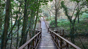 Bro i den Santa Cruzt stranden, Santa Cruz i Santa Cruz Galicia, Spanien Royaltyfri Fotografi