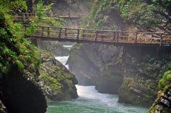 Bro i den Vintgar kanjonen Royaltyfria Bilder