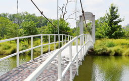 Bro i en parkera Royaltyfria Bilder