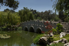 Bro i kinesisk botanisk trädgård royaltyfria bilder