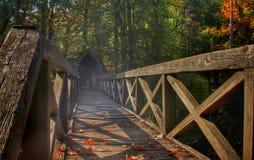Bro in i mist Arkivbild