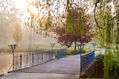 Bro i morgonljuset, vår trädgårds- Stromovka i Prague Royaltyfria Bilder