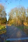 Bro i parkera under sista dagar av nedgången - vertikal sammansättning royaltyfri bild