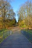 Bro i parkera under sista soliga dagar av nedgången Royaltyfria Foton