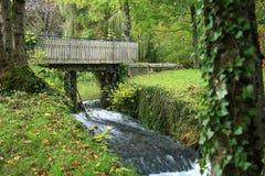 Bro i skog på vattenfallet Royaltyfria Bilder