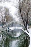 Bro i snö Arkivfoto