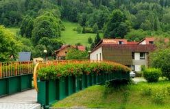 Bro med blommor Arkivfoto
