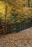Bro med härliga höstsidor Arkivbild