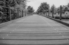 Bro med inga personer i svartvitt Royaltyfri Bild