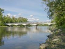 Bro med träd i en parkera Arkivbilder