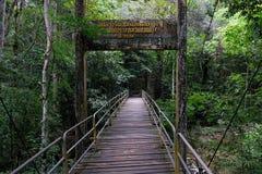 Bro nära den Lumpee vattenfallet i Souther Thailand arkivbild