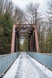 Bro och bock 3 Arkivfoto
