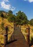 Bro och landskap Arkivbild